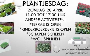 28 april plantjesdag & schapen scheren